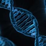 DeNAがDNA解析!?Yahoo!も遺伝子モニター募集中