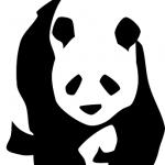 パンダの可愛すぎる動画♪