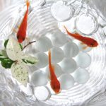 インスタで涼しげな「金魚」が人気!?アートアクアリウム2018も必見!