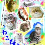 今日8月8日は「世界猫の日」。猫好きさんは開催中の「ねこ休み展2018夏」に行ってみませんかー?
