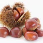 秋の味覚のひとつ「栗」!栗を贅沢に使った和と洋の絶品お取り寄せスイーツ10選!